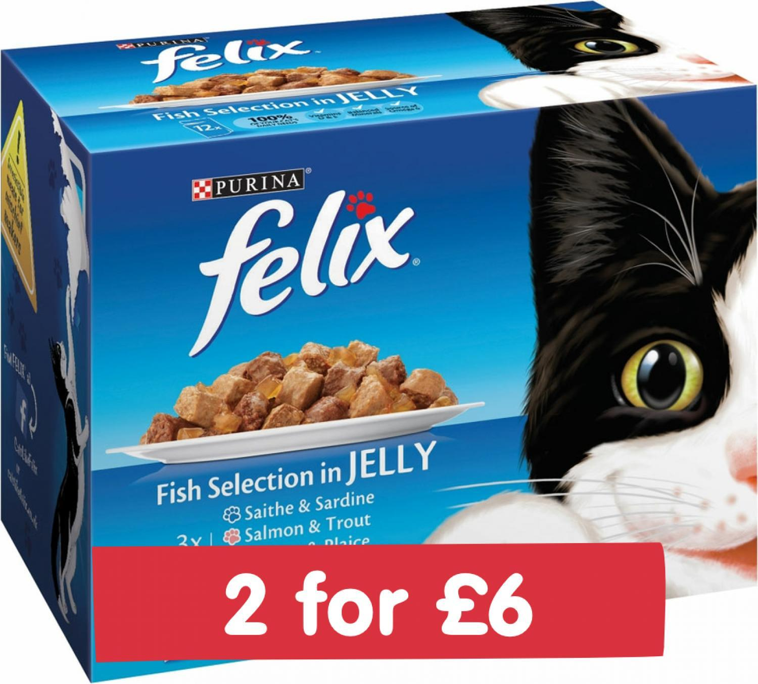 Felix Pouch Fish In Jelly 12x100g