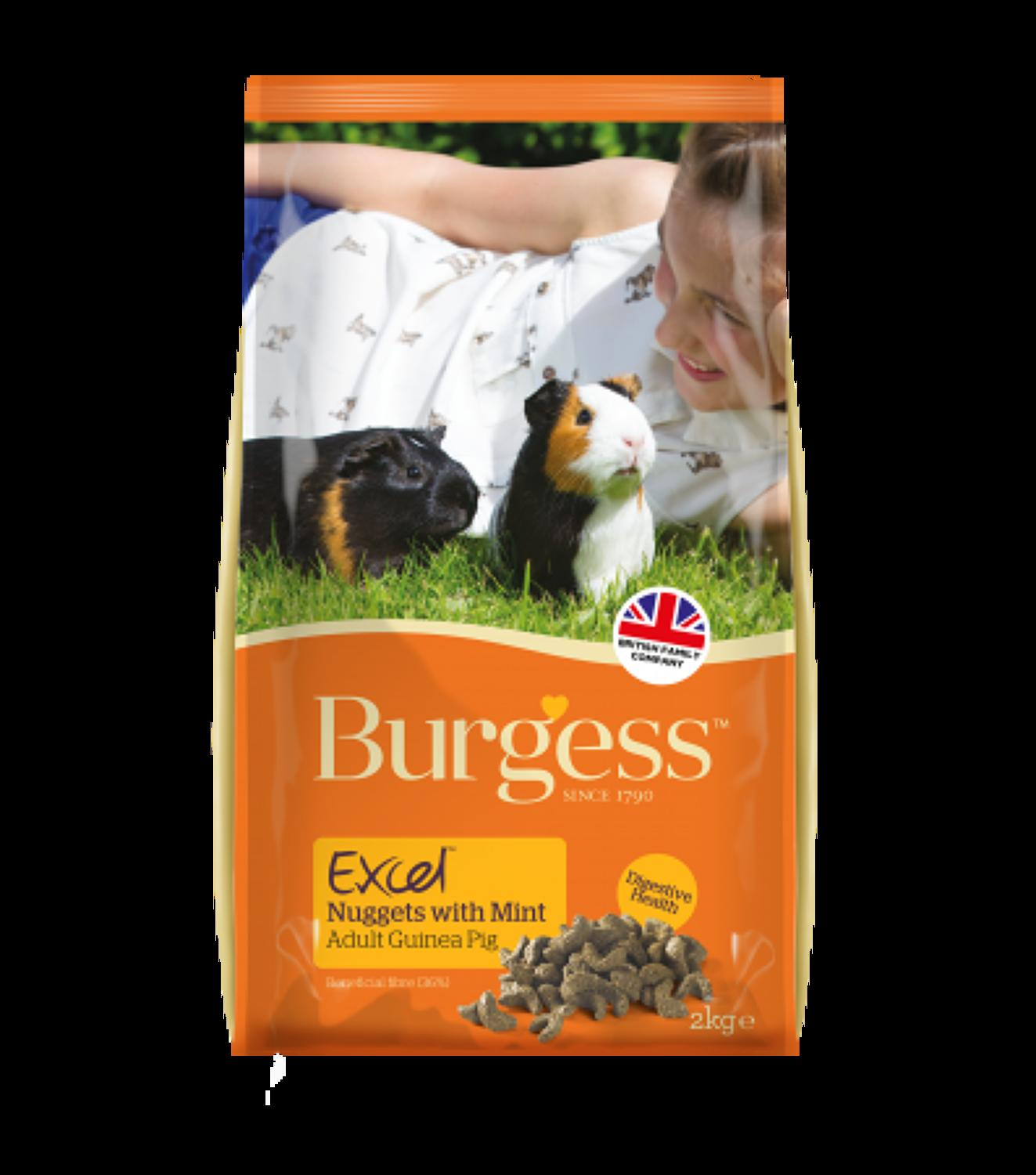 Excel Guinea Pig Nuggets with Mint 2kg