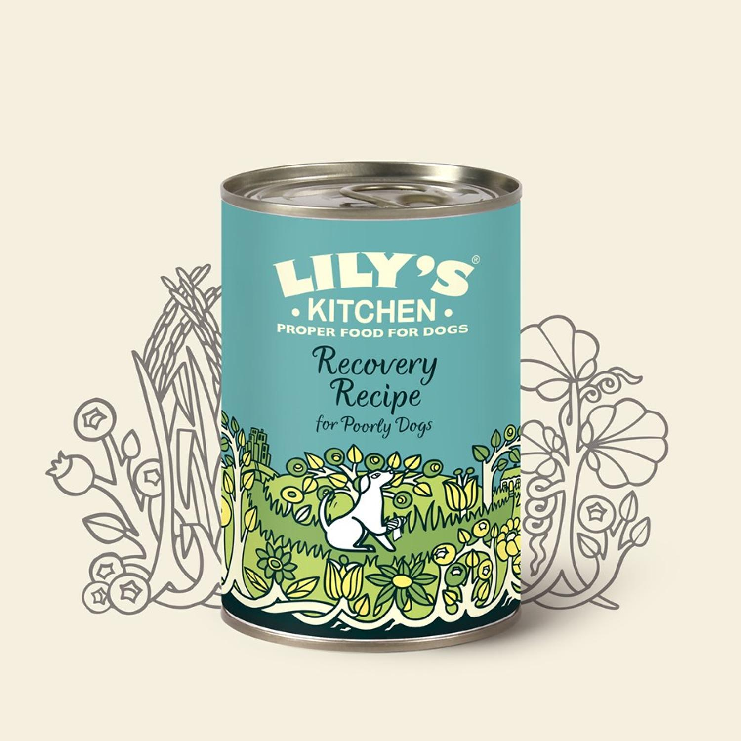 Lily's Kitchen Recovery Recipe 400g