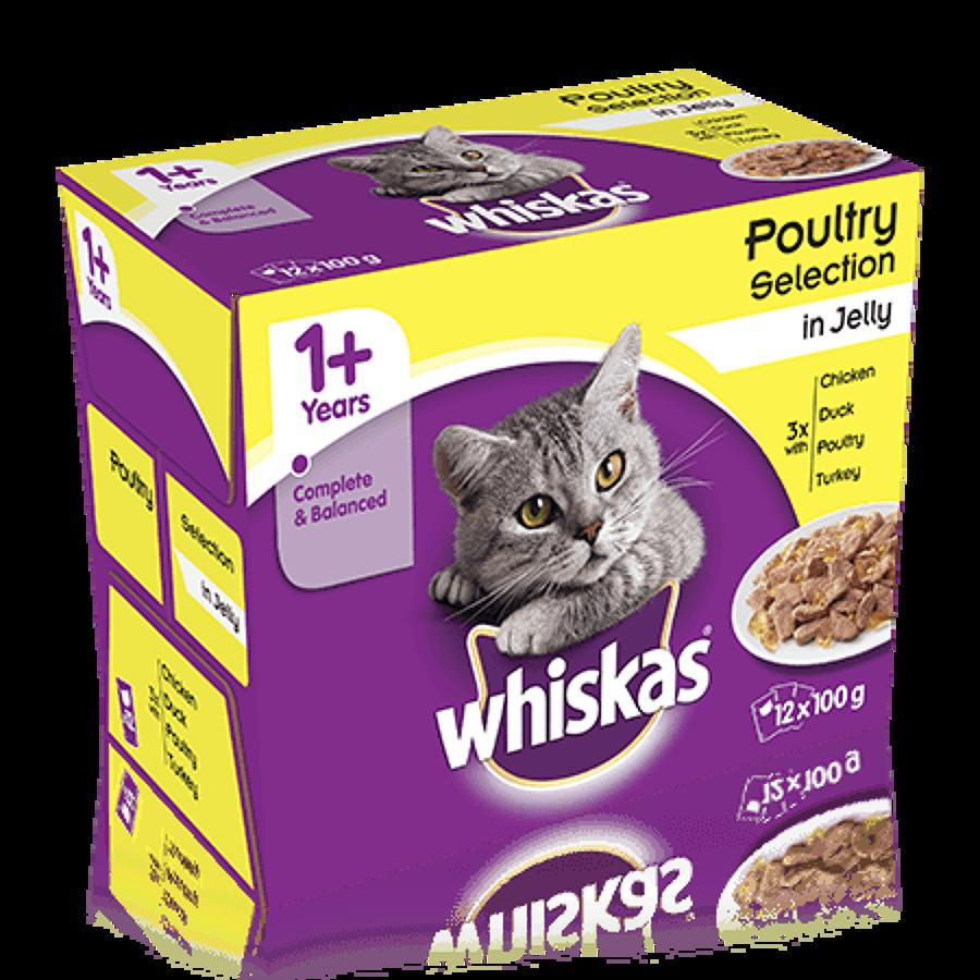 Whiskas 1+ Poultry In Jelly 12x100g