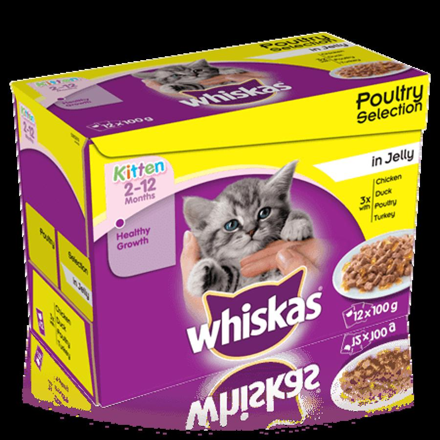 Whiskas 2-12 Mnth Poultry in Jelly 12x100g