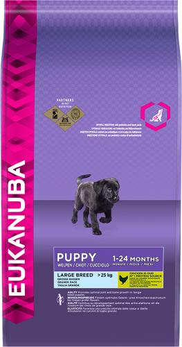 Eukanuba Dog Large Breed Puppy Chicken 12kg